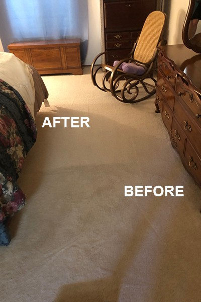 carpet cleaning companies near me