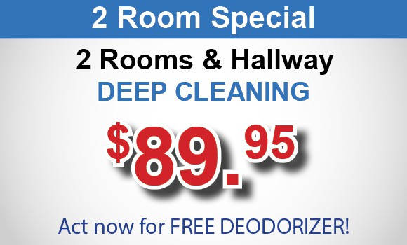 2 room carpet cleaning special