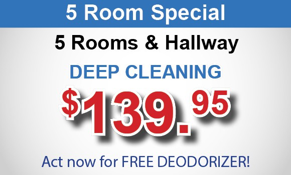 5 room carpet cleaning special